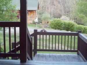 042415 Doves on the porch