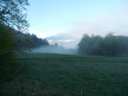 042815 Fog in the valley