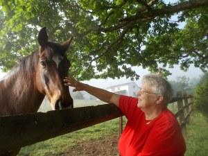 052015 Kathy pets stallion