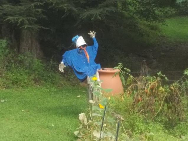 080515 Scarecrow ala Nathaniel