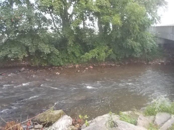081015 Creek is low