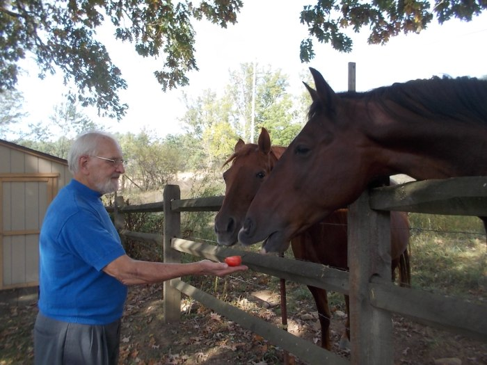 Al gives the horses some apples
