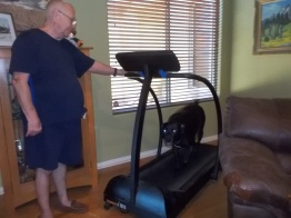 102415 Toby exercising on treadmill