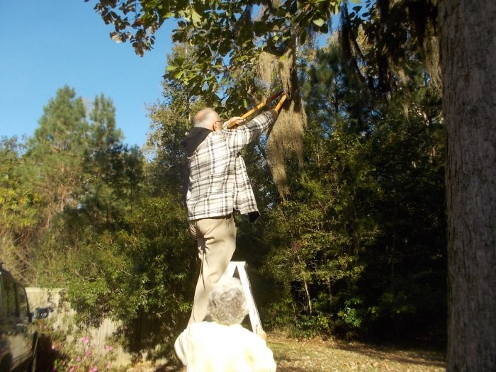 111415 Chris holds ladder for JC cutting moss.JPG