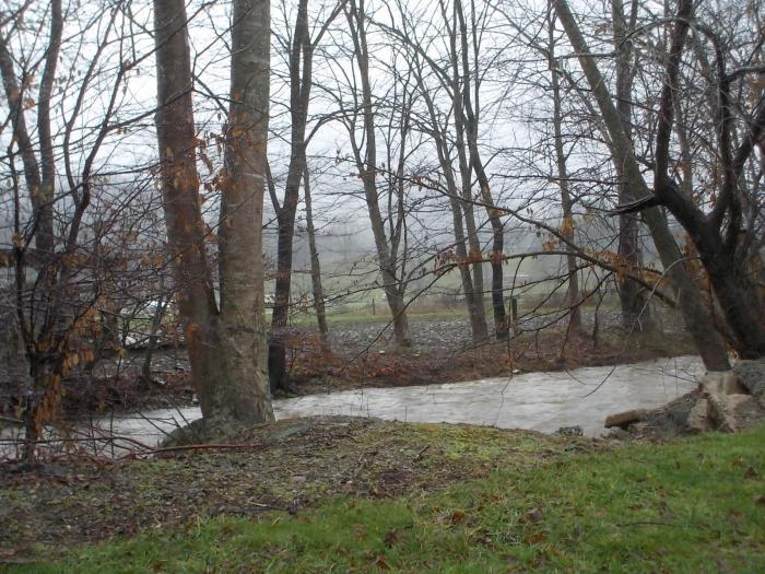 122415 J Creek swollen by warm rain.JPG