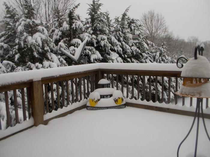 012216 Decked snow.JPG