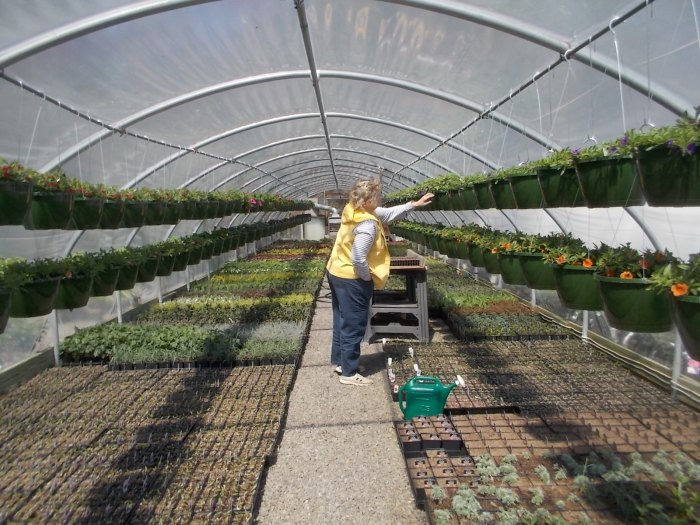 040316 Amy looks at plant in greenhouse.JPG