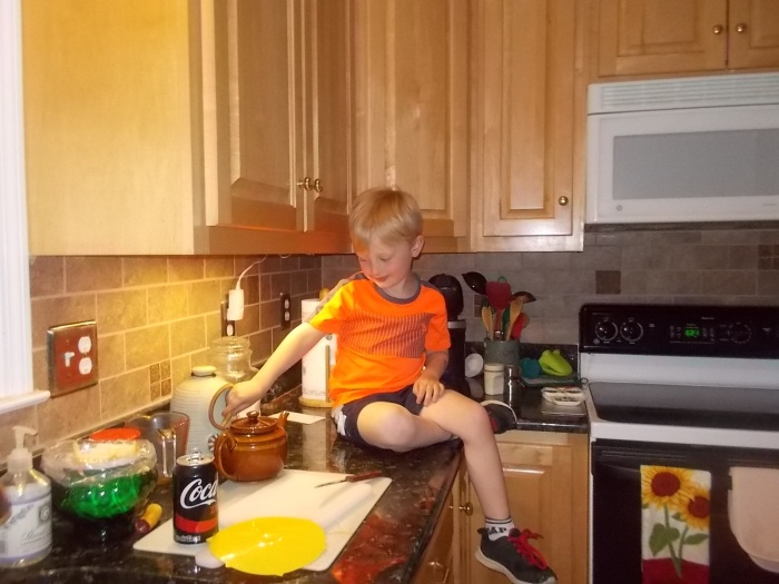 041816 Hopped on counter by himself.JPG