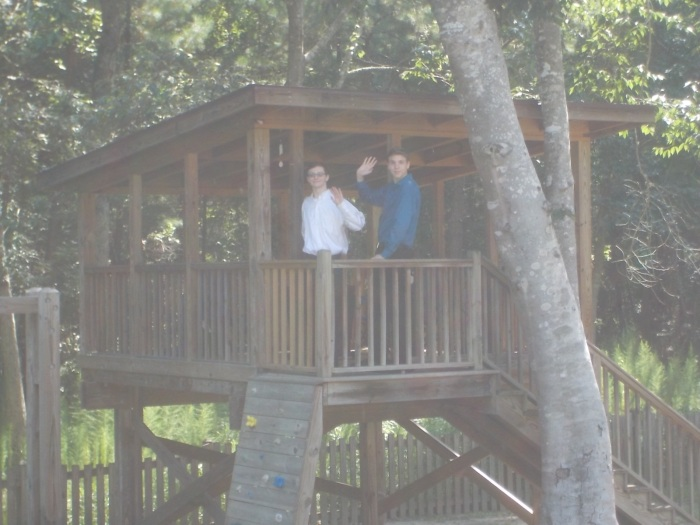 072416 Lamos tree house D N.JPG