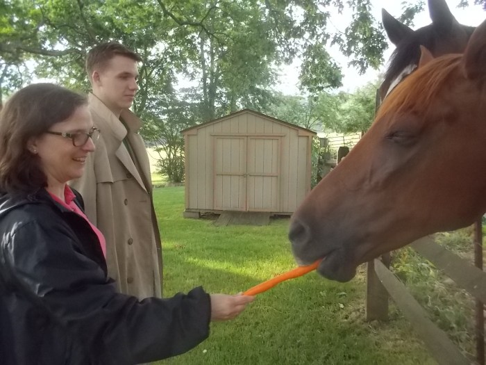 061617 K N feed horses carrots.JPG