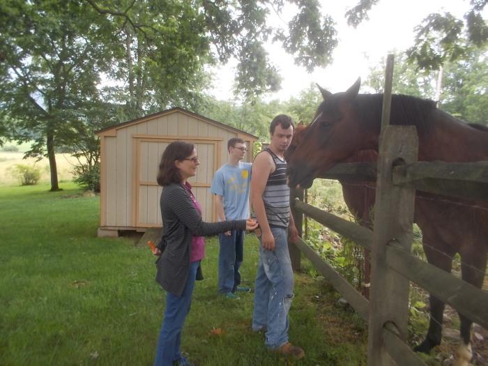 062217 K D Dennis feed horses.jpg
