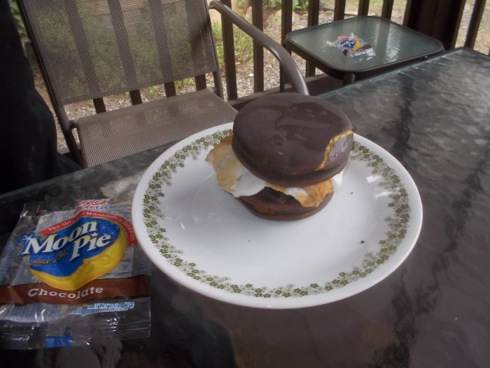 081017 Moonpie S'more on National S'mores Day.jpg