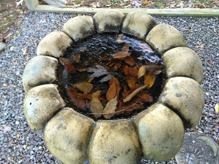 103017 Frozen birdbath.jpg