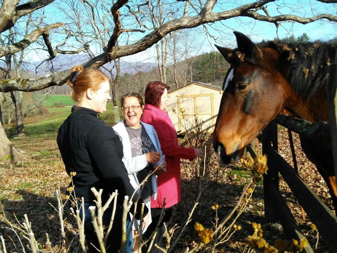 111117 Barbara Kim Chrissie feed horses.jpg