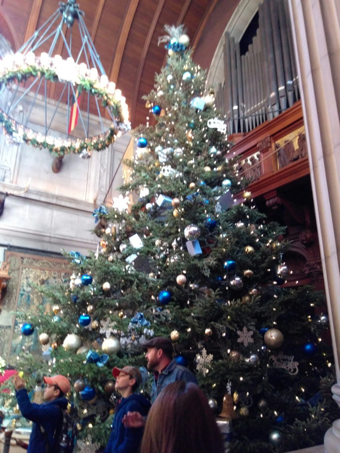 112717 Biltmore Christmas tree.jpg