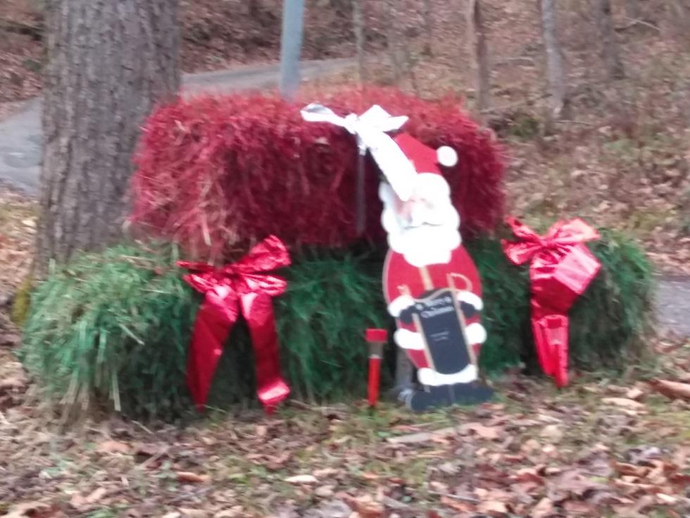 120717 Mountain Christmas decoration.jpg