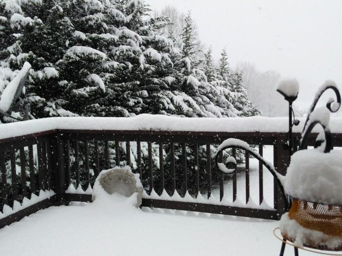 120817 Snow on the deck.jpg