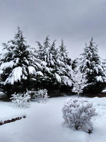 120917 Snow scenes (3)