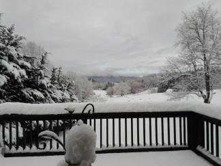 120917 Snow scenes (5)