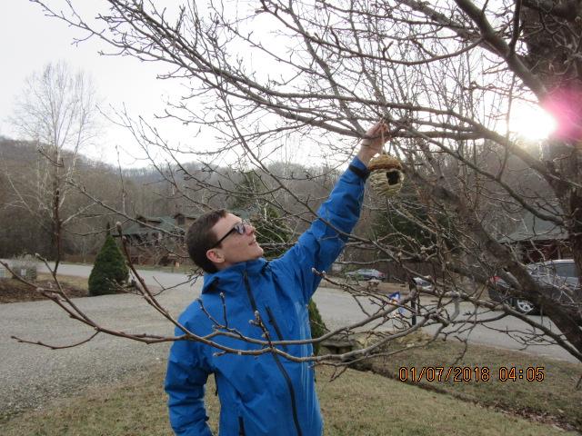 010718 David hangs Patty Pocket for birds.JPG
