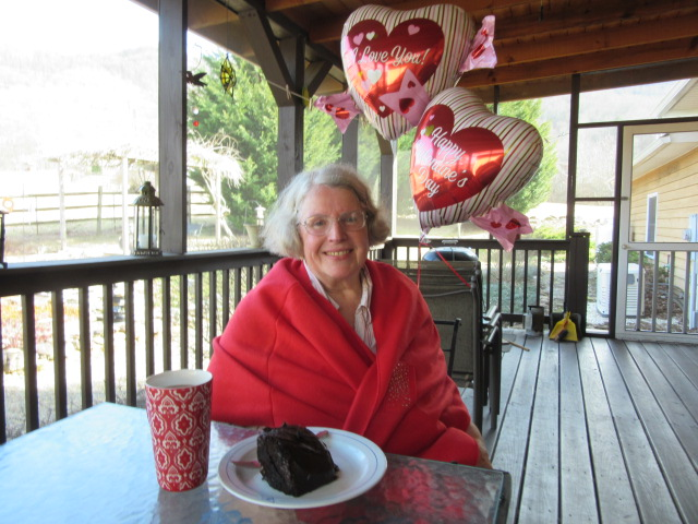 021518 Valentine's cake on porch.JPG