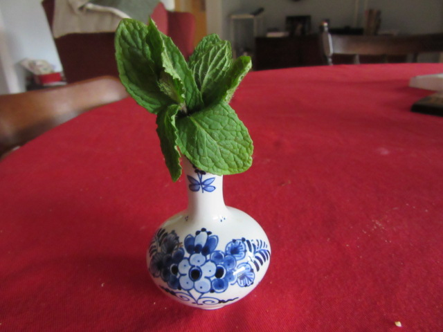 032118 Mint leaves from garden.JPG