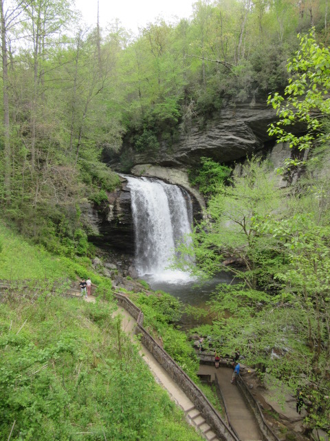 050518 Looking Glass Falls.JPG