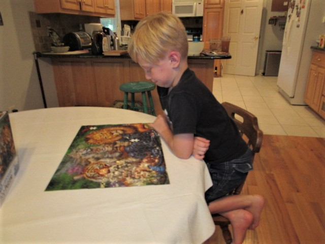 072318 Logan finishes our puzzle.JPG