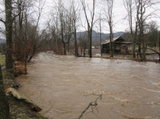 122818 J Creek flooding (1)