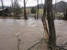 122818 J Creek flooding (2)