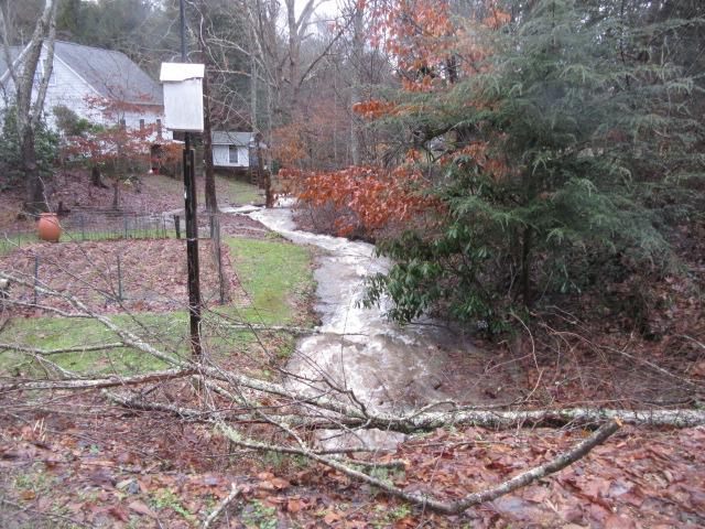 122818 Park Branch overflowing.JPG