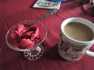 022219 Nate's raspberry sorbet