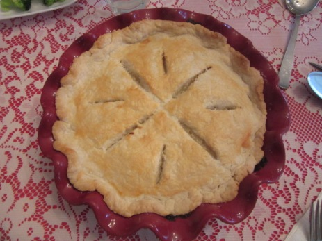 030119 Chicken pie by AM