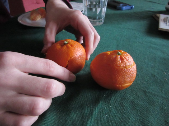 031519 David's orange and mine.JPG