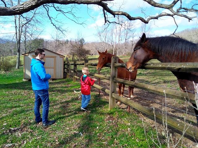 032119 David Logan feed horses.jpg