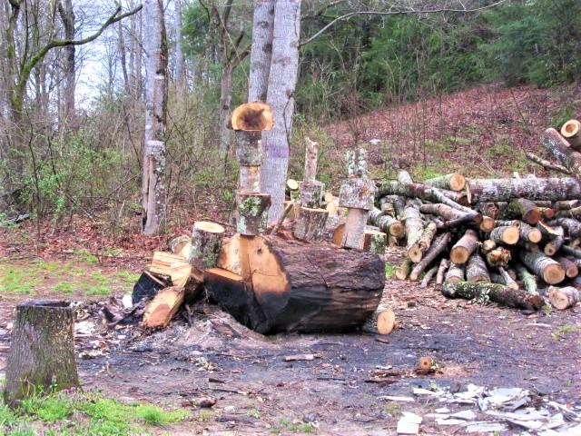 032619 Burn pile art.JPG