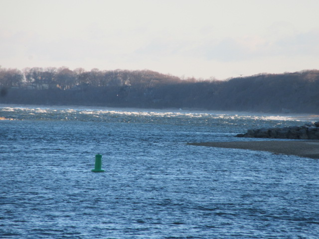 040119 Whitecaps on West Meadow Beach.JPG