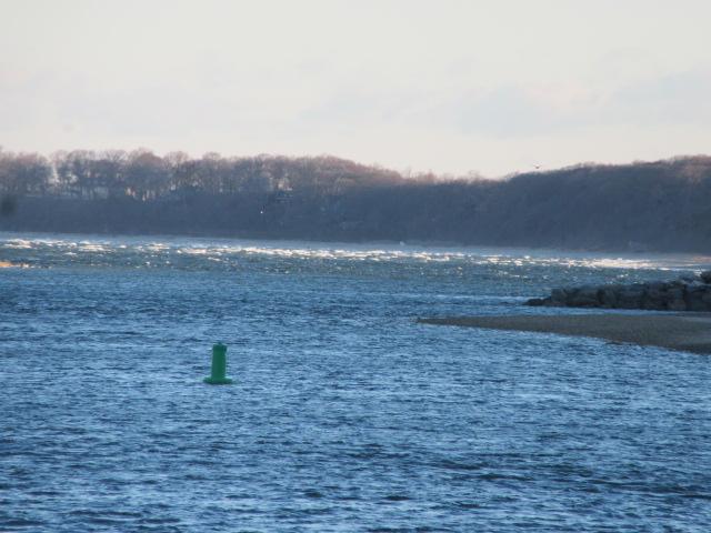 040119 Whitecaps on West Meadow Beach.JPG