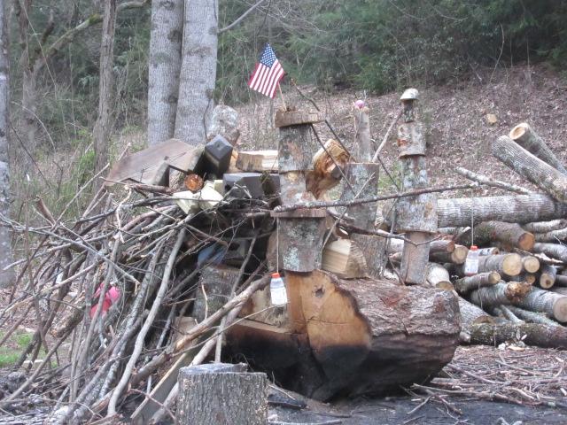 040619 Landscaper's burn pile art.JPG