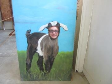 052819 2 David as a goat