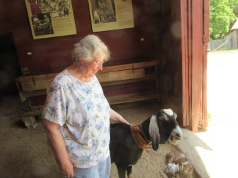 052819 5 Anne pets a goat