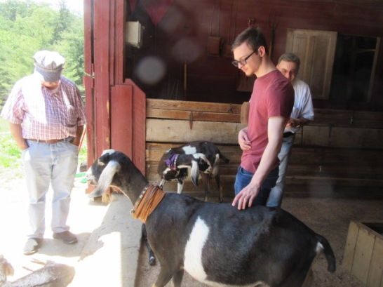 052819 6 JC D Gerhard with goats